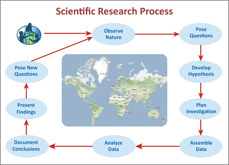 GLOBE Research Flow Chart