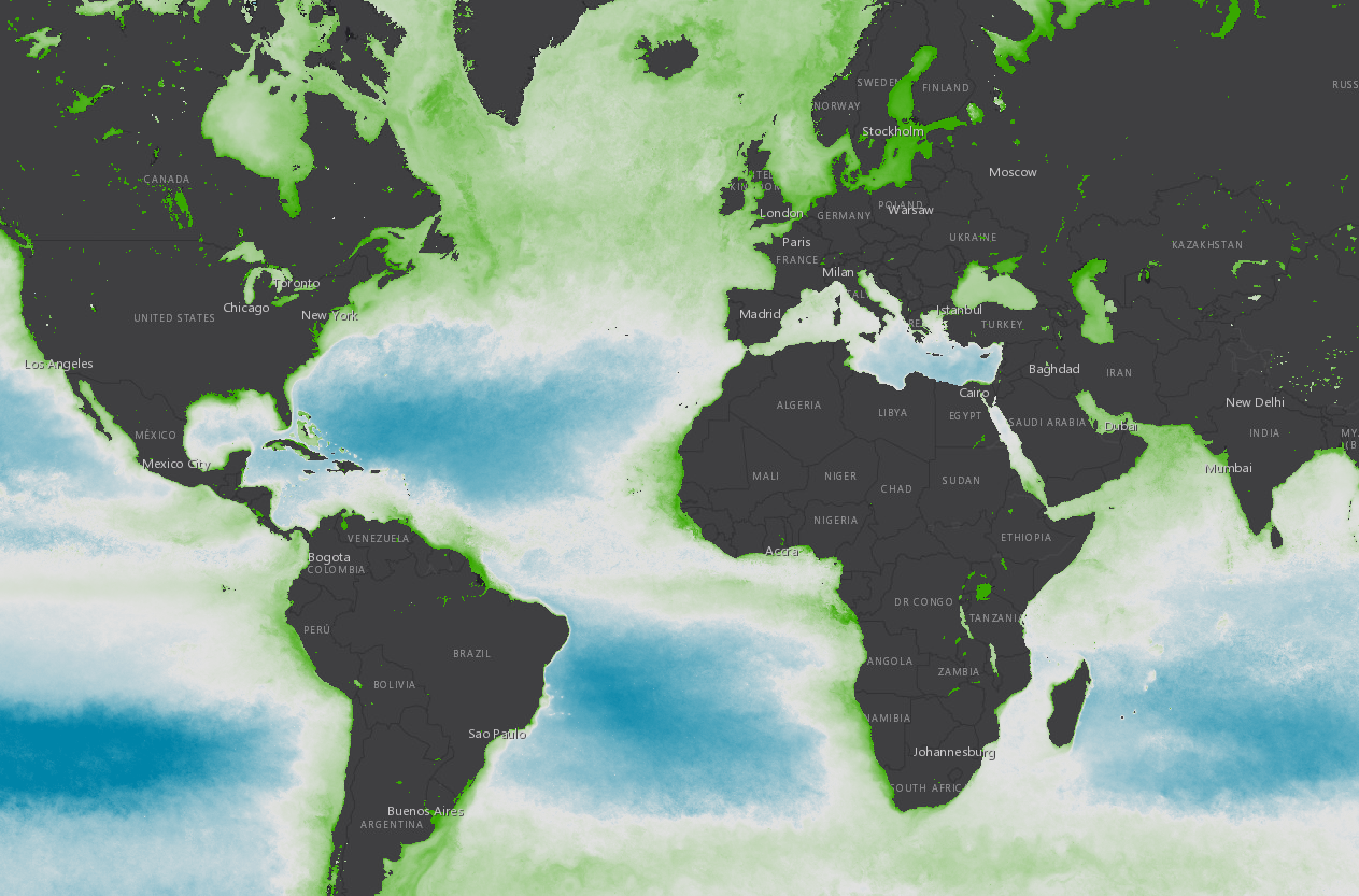 A map of global chlorophyll concentration