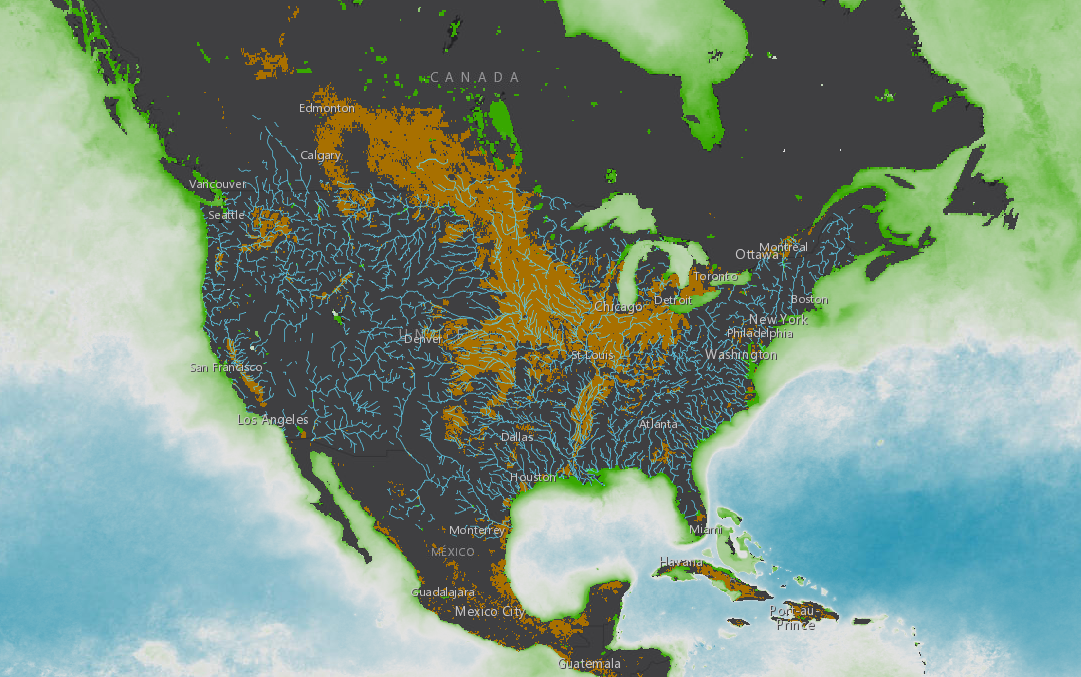 Phytoplankton and Watersheds