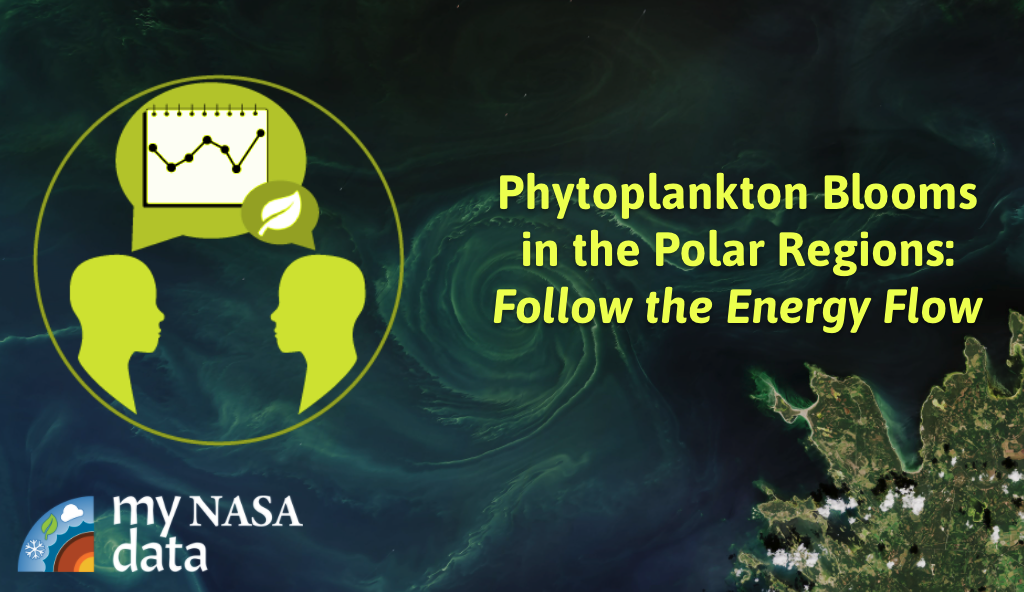 Scientifically-Interesting Story of Phytoplankton Blooms: Follow the Energy Flow
