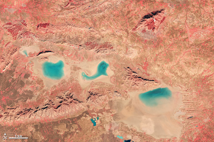 Near infrared, red, and green light were used to create this false-color image of Algeria. Red, plant-covered land dominates the scene. (NASA image by Robert Simmon with Landsat 8 data from the USGS Earth Explorer.)