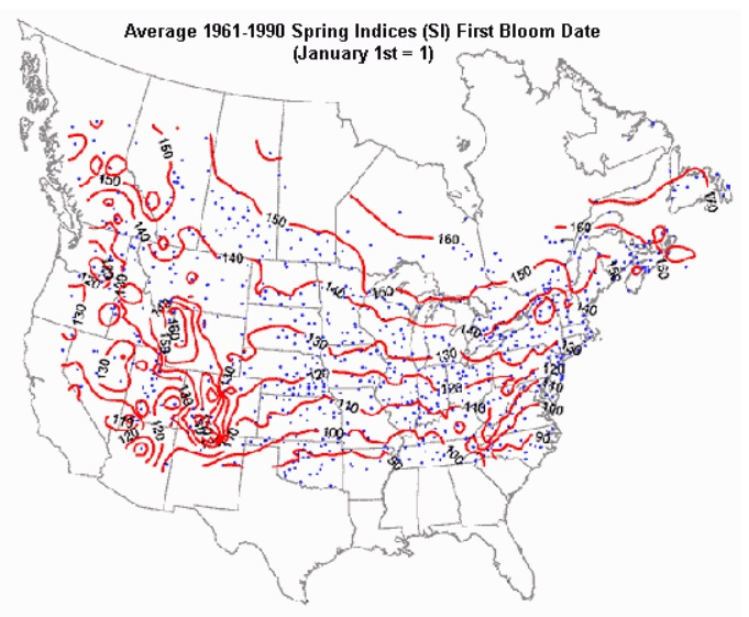 Average Spring Indices (SI) First Bloom Dates