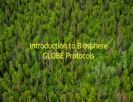 Biosphere Introduction Image
