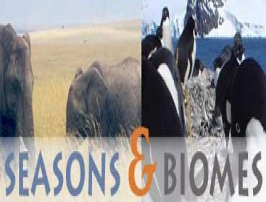 seasons and biomes